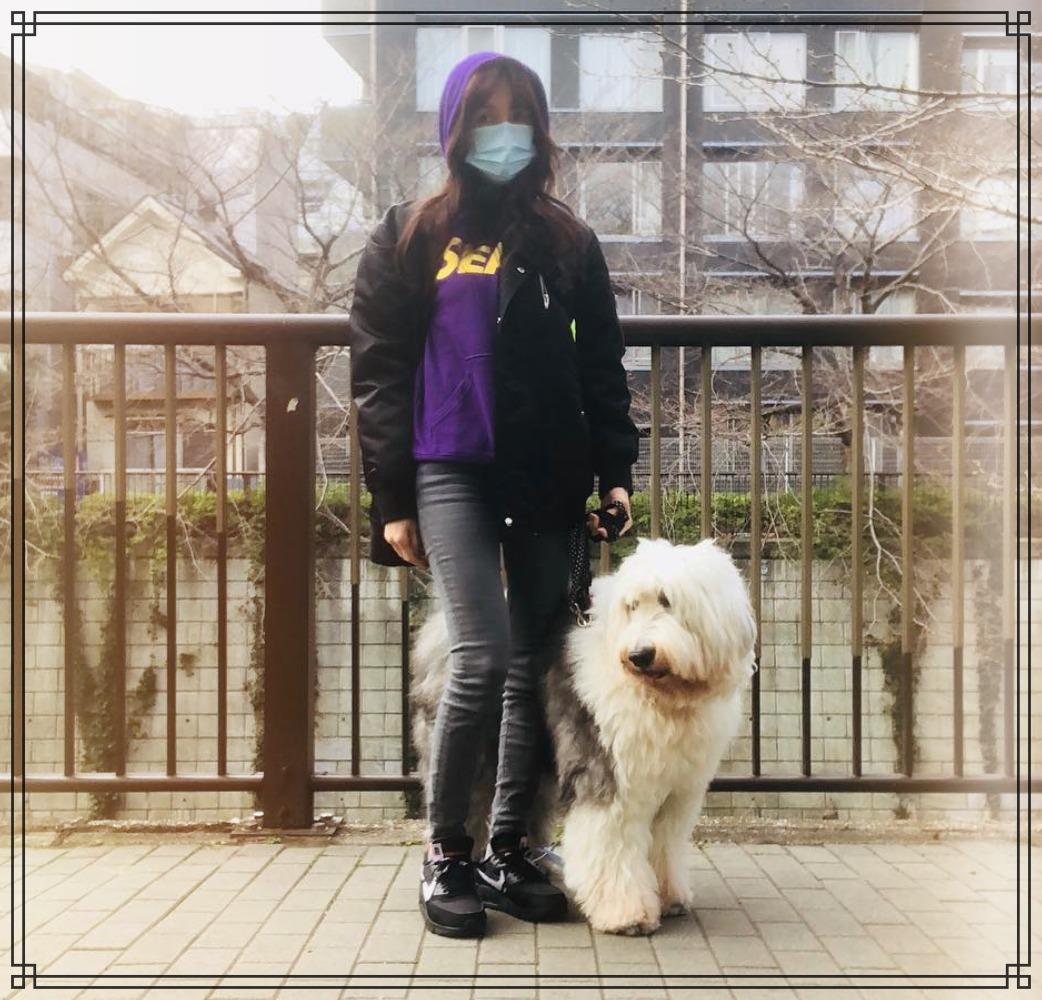 愛犬ヒカルと工藤静香さんの画像
