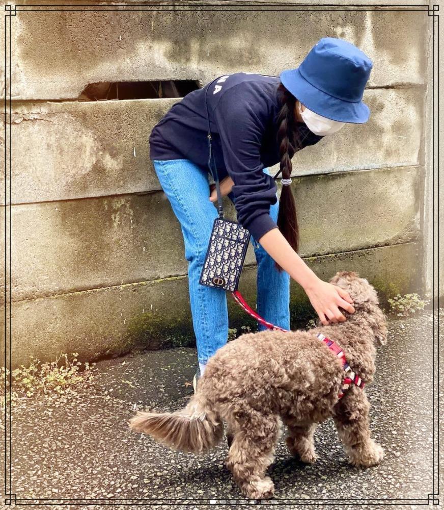 愛犬アムとcocomiさんの散歩画像