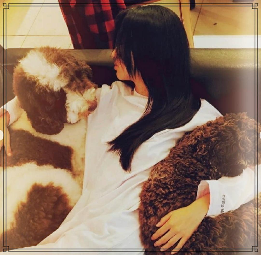 愛犬エトワールとアムとkokiさんの画像