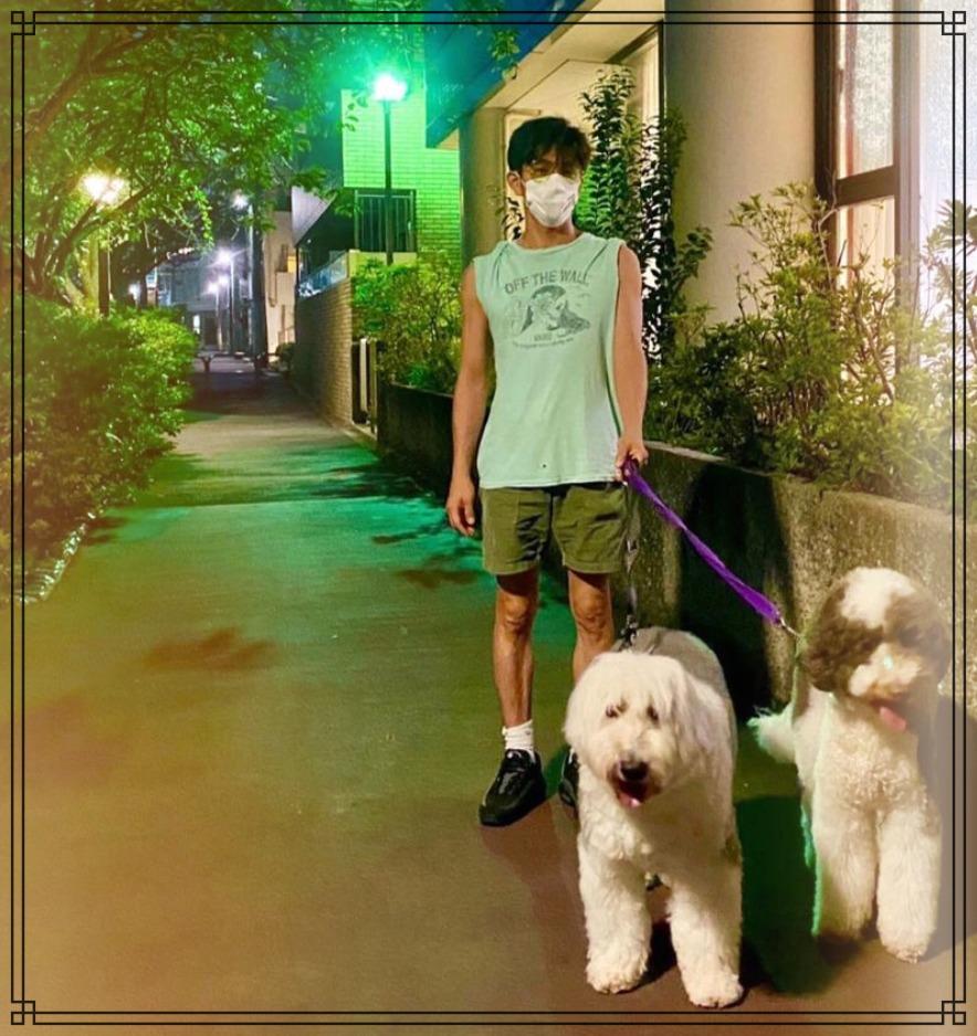 木村拓哉さんの散歩画像