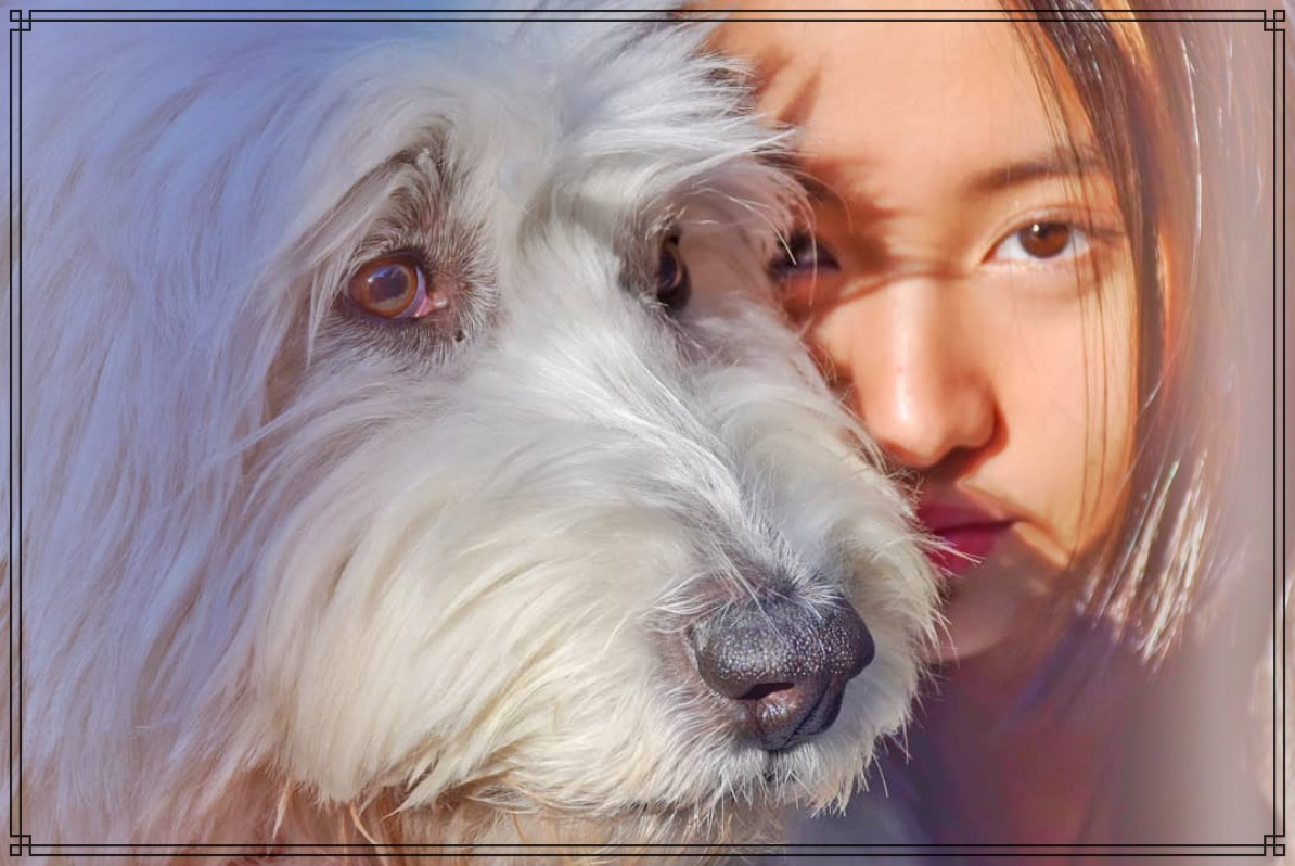 愛犬ヒカルと娘のkokiさんの画像
