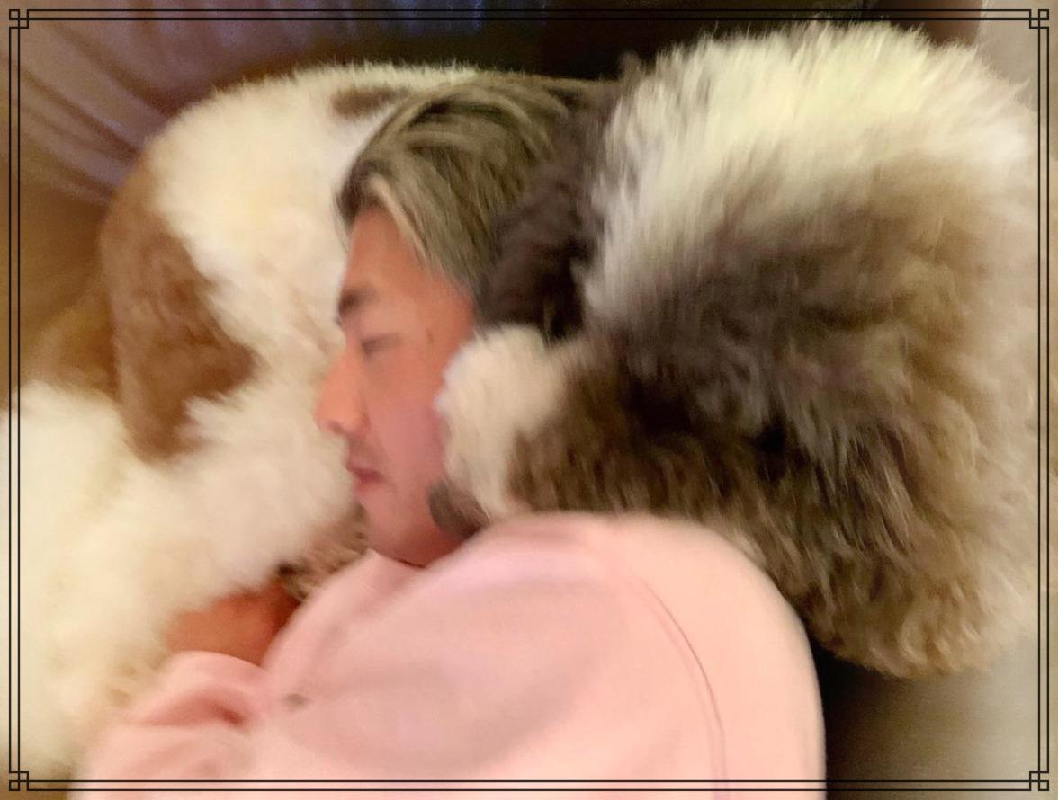 愛犬エトワールと木村拓哉さんの画像