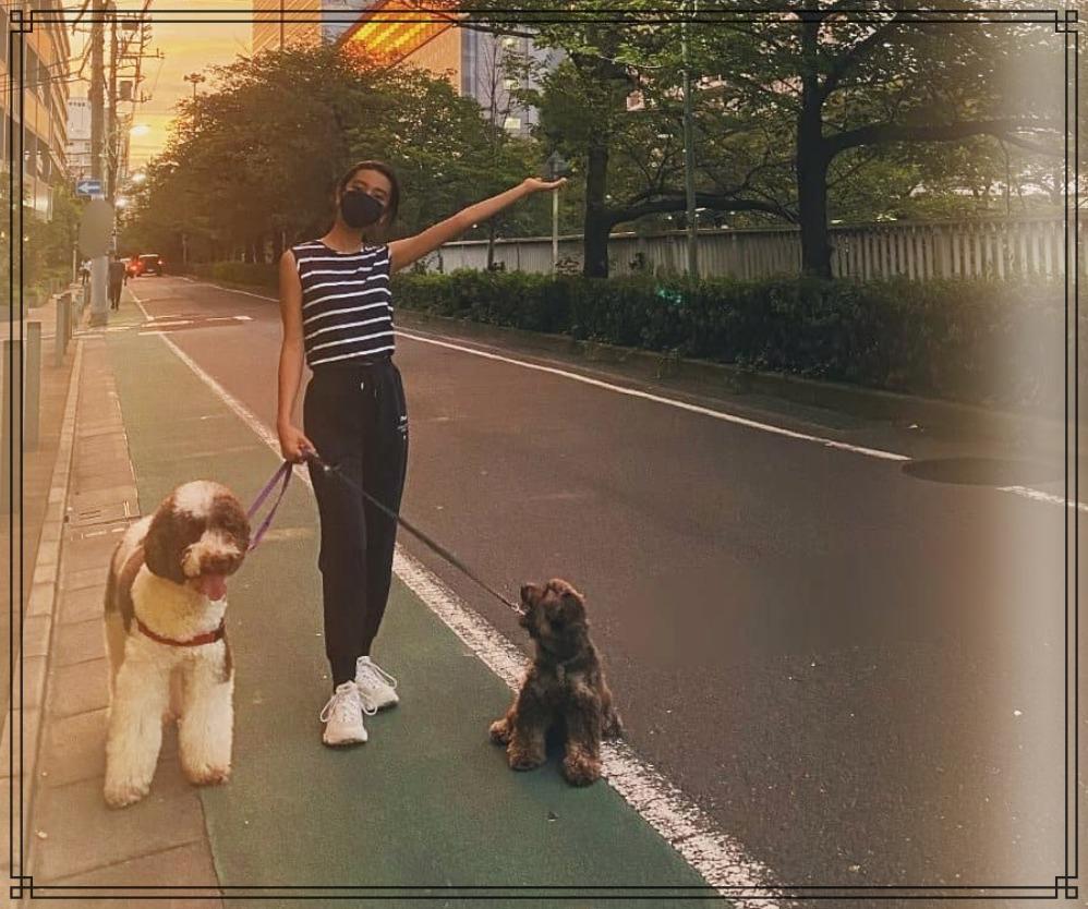 愛犬アムとkokiさんの散歩画像