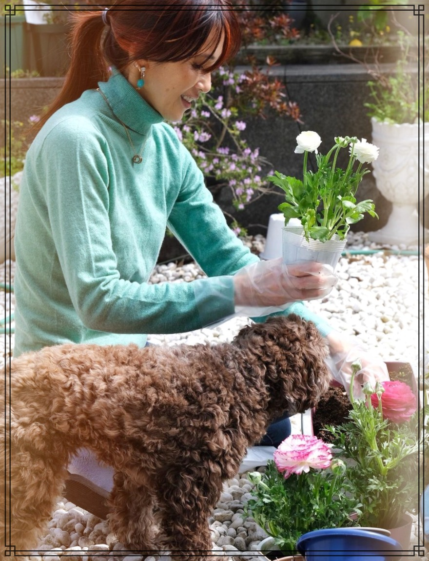 愛犬エトワールと工藤静香さんの画像