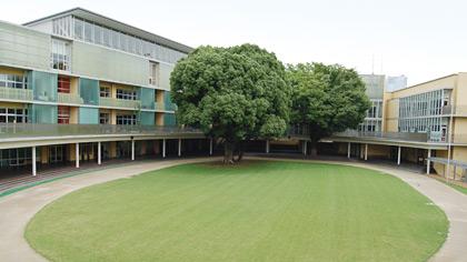 青山学院初等部の画像